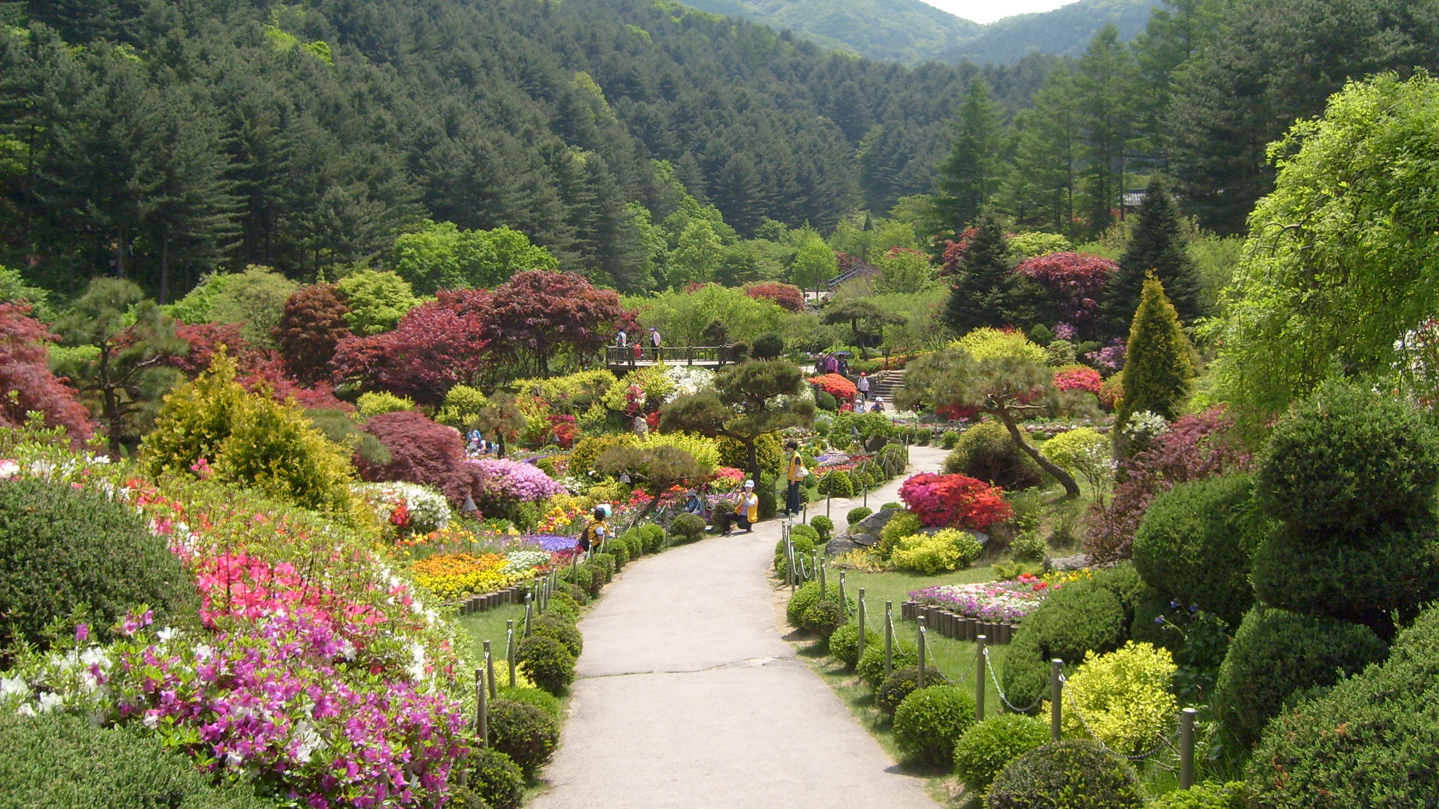 Let's visit the Garden of Morning Calm using public transportation (train and bus)