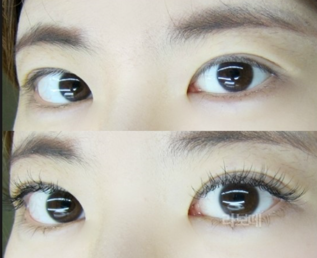 Korean Experience Eyelash Extensions Triptoday Anyone Can