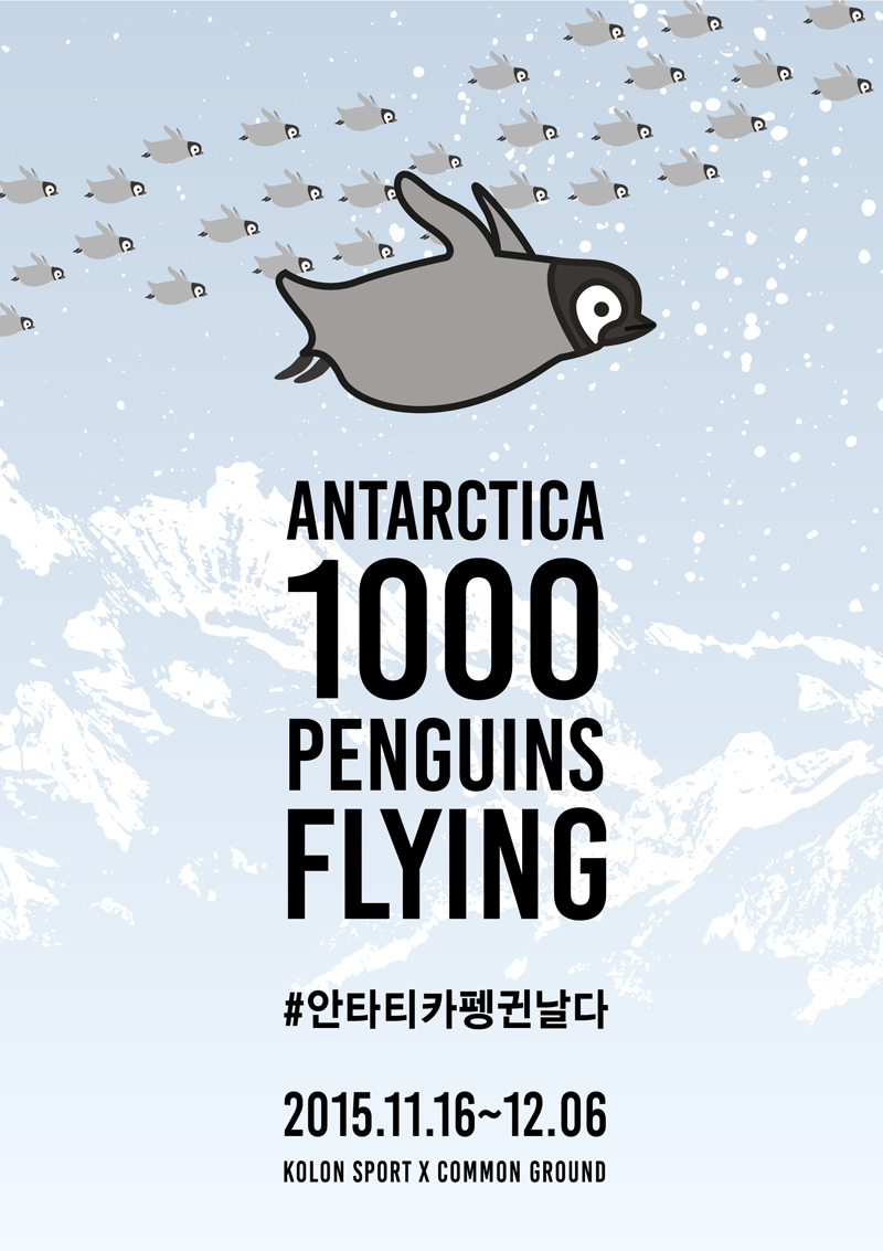 [Antarctica 1000 Penguins Flying Exhibition]