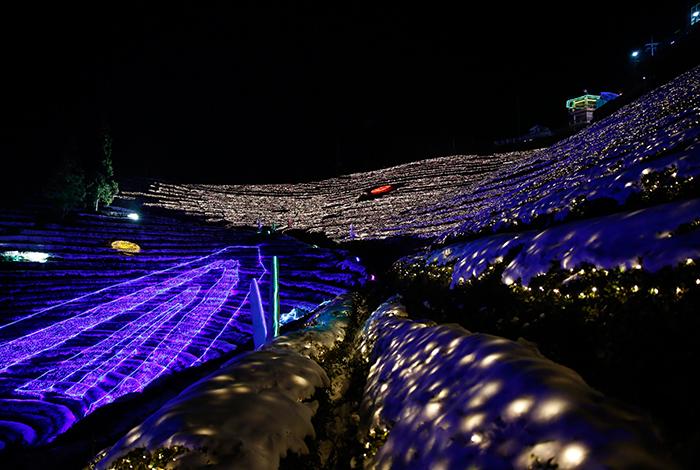 Beautiful Boseong Light Festival!