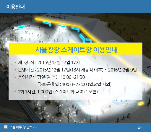 Seoul Outdoor Skating Rink서울광장 스케이트장