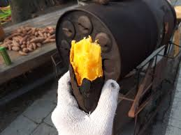 Korea #1 Winter Food- Roasted Sweet Potatoes!