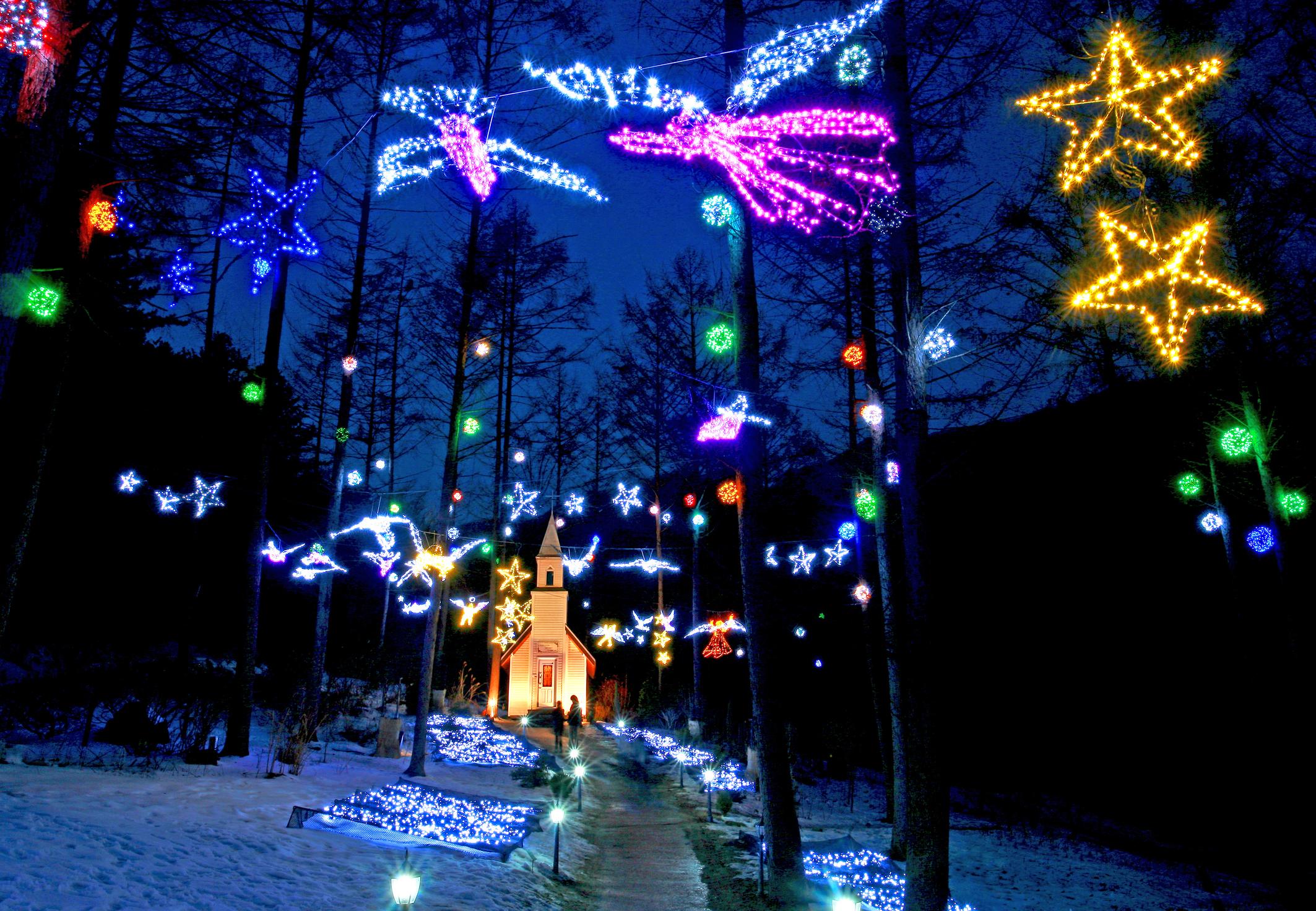 Lighting Festival at The Garden of Morning Calm
