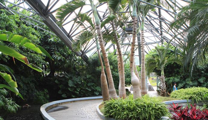 Amazing Botanical Garden in Jeju, Yeomiji Botanical Garden