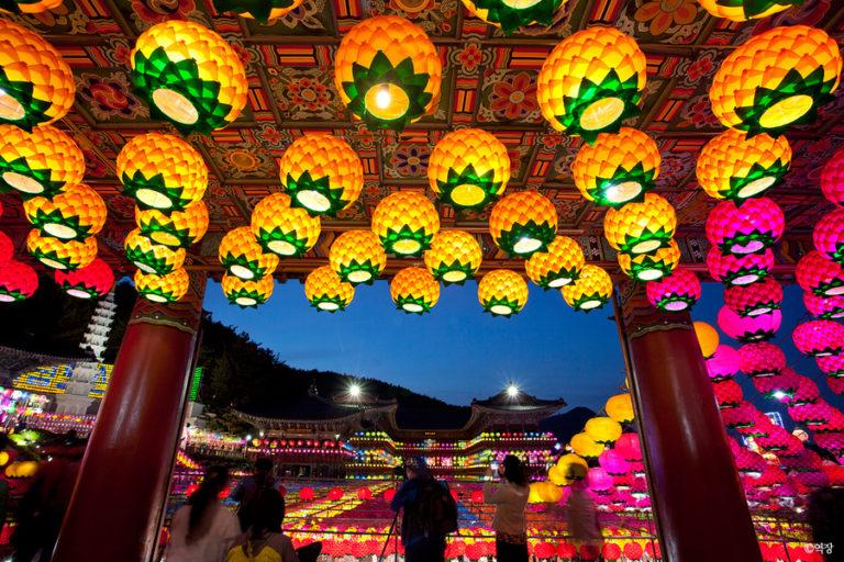 2016 Lotus Lantern Festival!
