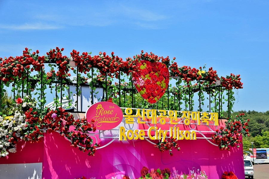 Ulsan Rose Festival, Destinasti Wisata Romantis di Bulan Mei (Ulsan Rose Festival, Romantic Destination you don't wanna miss this May 2016!)