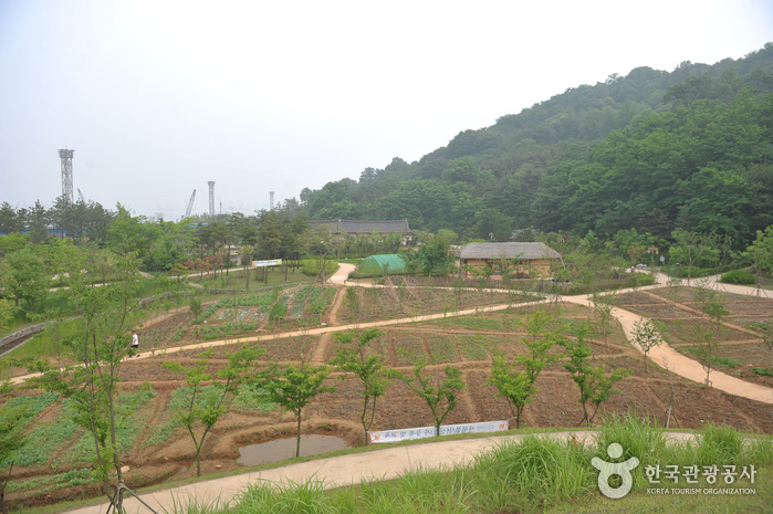 [Part 3] WOLMIDO  :    From  the Battle Ground  to the Natural Attractive Tourism