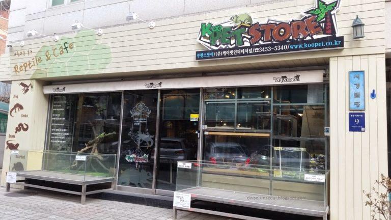 SEOUL ANIMAL CAFE