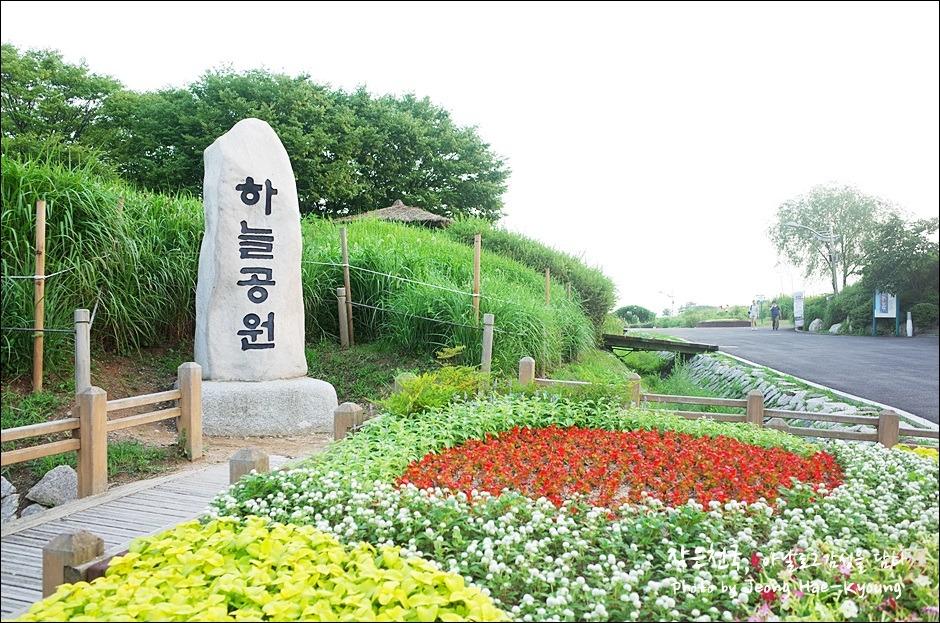 Seoul Haneul Park (Sky Park) Flower Festival