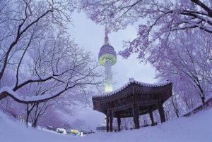 Christmas in Korea!