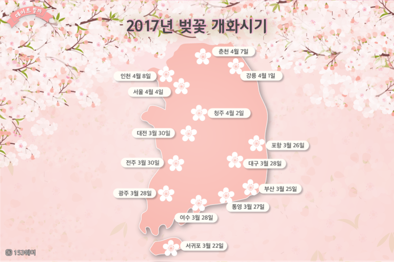 When to see cherry blossom in Korea 2017