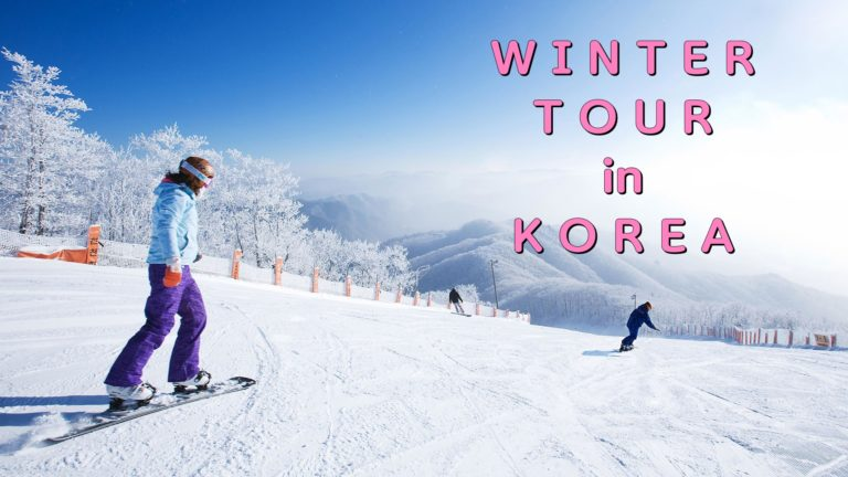 Korea Winter Tour Collection