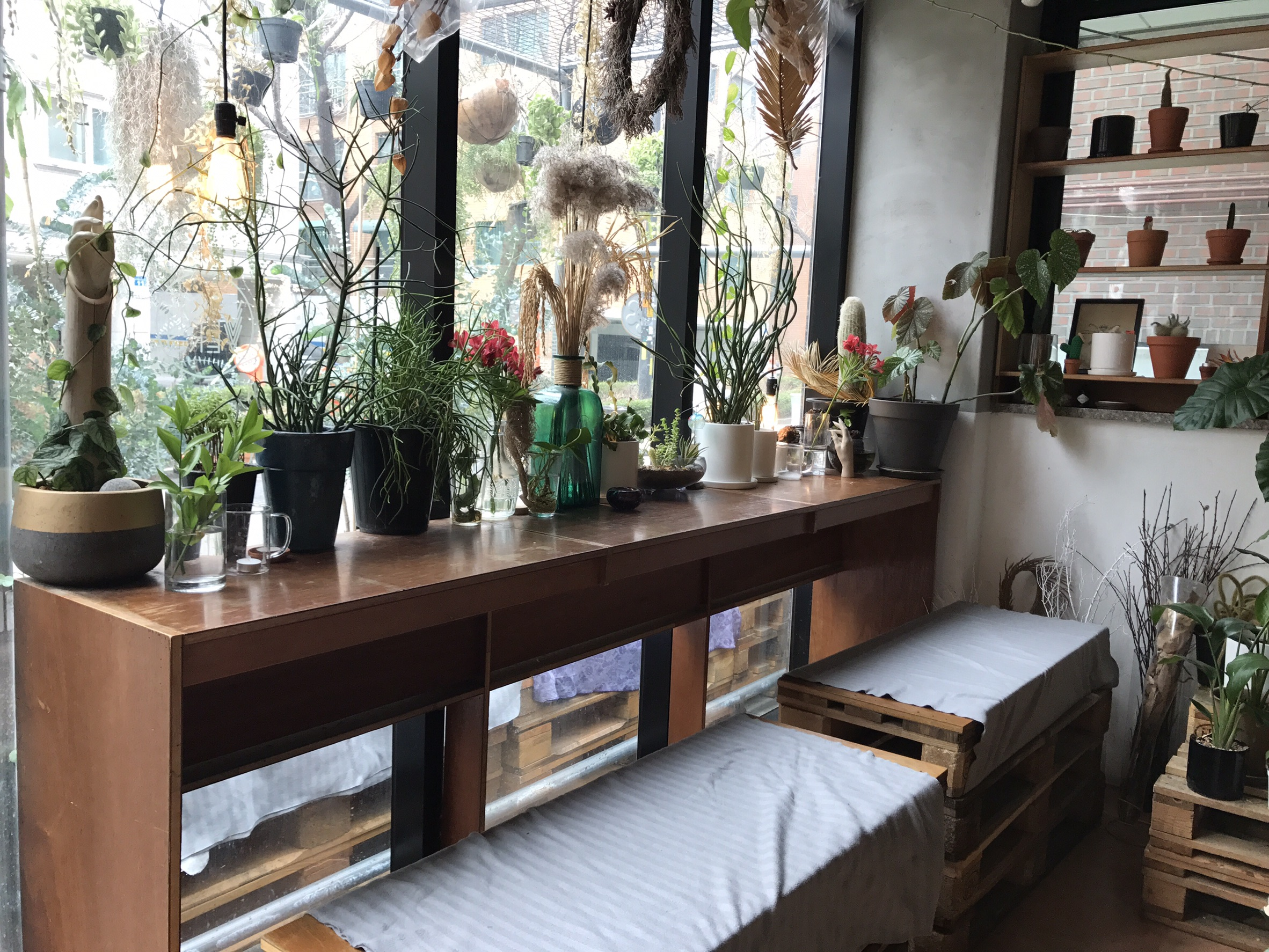 Ver's Garden, a beautiful floral cafe near Hongdae