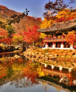 秋天的葉子