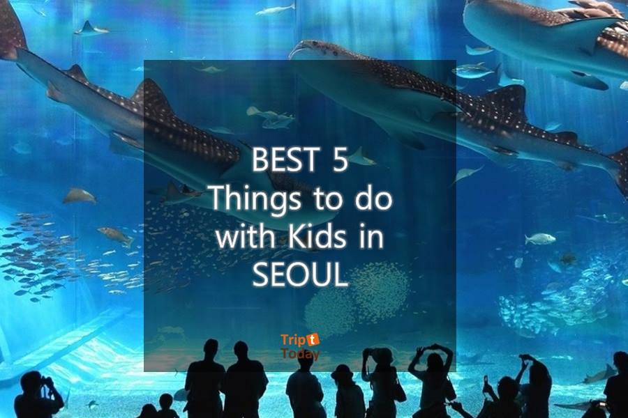 The BEST 5 things to do with Kids in SEOUL